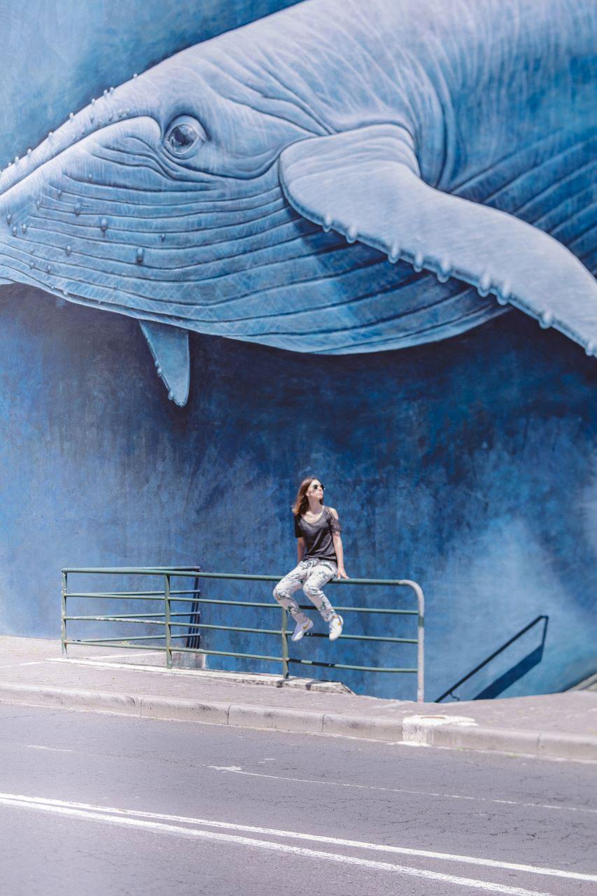 Madiera wal streetart
